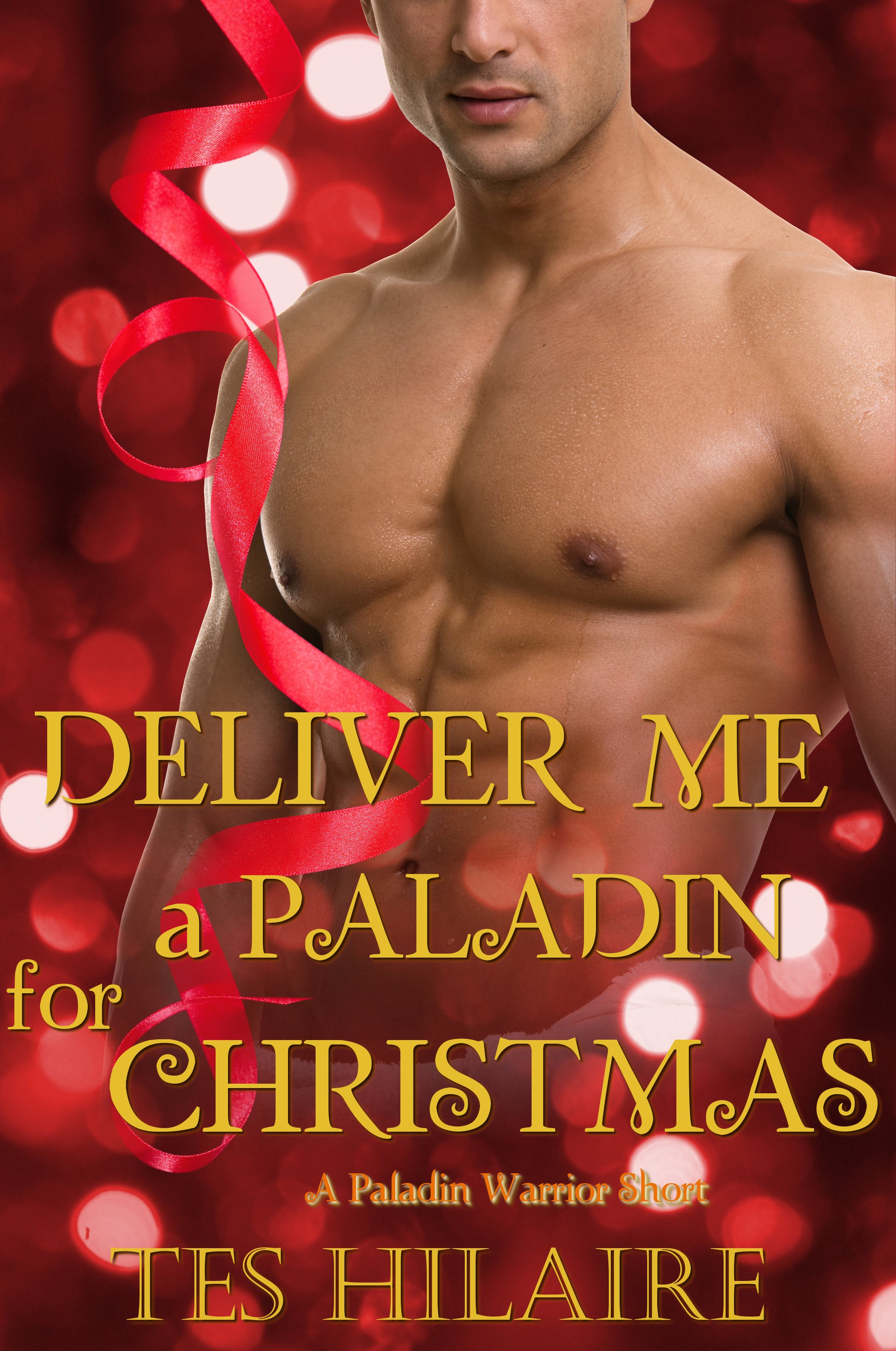 Deliver Me a Paladin for Christmas cover